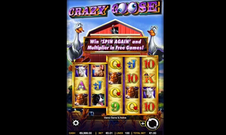 crazy goose slot game