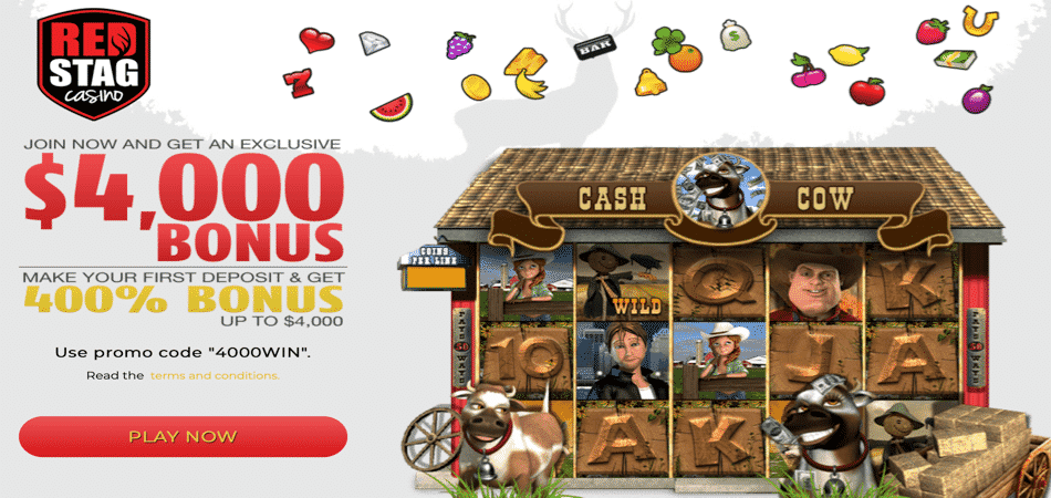 cash cow big deposit bonus code