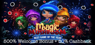 high country magic mushrooms cashback