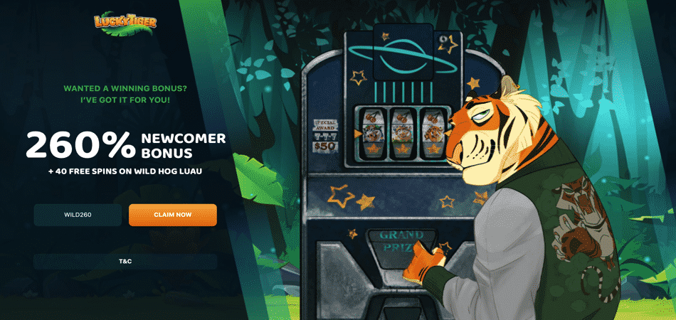wild hog luau free spins - lucky tiger casino